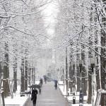 多摩センター 雪